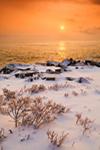Sunrise View from Ocean Drive, Acadia National Park, Mt Desert Island, ME