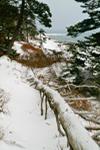 Ocean Trail in Winter, Acadia National Park, Mt Desert Island, ME