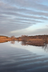 Early Morning at Sudbury River, Great Meadows National Wildlife Refuge, Sudbury and Wayland Town Line, MA