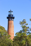 Currituck Beach Lighthouse and Treetops, Heritage Park, Outer Banks, Corolla, NC