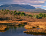Fresh Water Marshes along Abol Stream with Mt Katahdin in Background, Baxter State Park, Great North Woods, ME