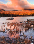 First Light at Sandy Stream Pond on Windy Morning with Mt Katahdin in Background, Baxter State Park, Great North Woods, ME