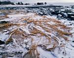 Snow on Salt Marsh and Rocks along Maine Coast, Cape Elizabeth, ME