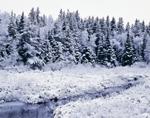 Moosehorn Brook after Snowfall, Moosehorn National Wildlife Refuge, Calais, ME