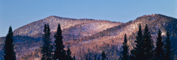 Mt Dustan and Balsam Firs, Wentworths Location and Second College Grant, NH, View from Magalloway, ME