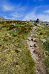Alpine Garden Trail on Mt Washington, White Mountains National Forest, NH