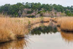 Tidal Creek through Estuarine Marsh, Donnelley Wildlife Management Area, Ace Basin National Estuarine Research Reserve, Colleton County, SC