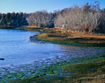 View of Little River from Gleason's Point, Western Passage, Passamaquoddy Bay, Perry, ME
