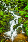 Waterfalls on Wild Cherry Brook, View from Newfound Gap Road, Great Smoky Mountains National Park, NC