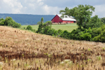 Red Barn, Hay Bales and Fields, Chattahoochee National Forest, Walker County, near East Armuchee, GA