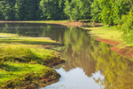 Small Cove on Chattahoochee River in Early Morning Light, West Point Lake Area, Troup County, LaGrange, GA
