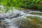 Rapids on Toccoa River, Chattahoochee National Forest, Union County, near Baxter, GA