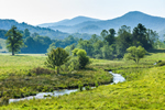 Stream through Valley with Mountains and Chatthoochee National Forest in Background, Towns County, near Presley. GA