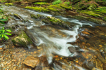 Small Rapids and Water-hewn Rocks in Dukes Creek, Chattahoochee Wildlife Management Area and Chattahoochee National Forest, White County, GA