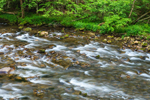Small Rapids in Little River, Great Smoky Mountains National Park, TN