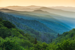 Mountain Layers in Early Morning Light, View from Overlook on Newfound Gap Road, Great Smoky Mountains National Park, NC