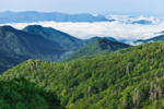 View of Mountains and Clouds from Overlook on Newfound Gap Road, Great Smoky Mountains National Park, NC