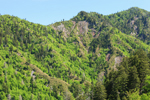Rock Cliffs on Mountainside, View from Newfound Gap Road, Great Smoky Mountains National Park, TN