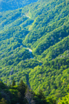 View of Newfound Gap Road through Forests and over Mountains from Newfound Gap, Great Smoky Mountains National Park, TN and NC