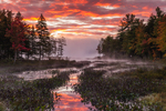Sportsman Pond with Ground Fog at Sunrise, Fitzwilliam, NH