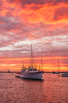 Sunrise over Boats in Cuttyhunk Pond, Cuttyhunk Island, Elizabeth Islands, Town of Gosnold, MA