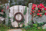 Old Wooden Gate with Grapevine Wreath and Stone Wall with Virginia Creeper Leaves in Fall, Cape Cod, Barnstable, MA