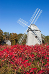 18th Century Higgins Farm Windmill and 1795 Harris-Black House in Autumn, National Register of Historic Places, Drummer Boy Park, Cape Cod, Brewster, MA