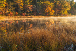 Early Morning Fog on Little Cliff Pond in Autumn, Nickerson State Park, Cape Cod, Brewster, MA