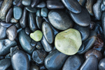 Close Up of Water-hewn Rocks on Pebble Beach at Dorr Point, Acadia National Park, Mt Desert Island, Bar Harbor, ME