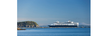 Cruise Ship entering Bar Harbor, View from Dorr Point, Acadia National Park, Mt Desert Island, Bar Harbor, ME