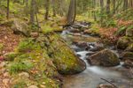 Jordan Stream in Autumn near Jordan Pond House, Acadia National Park, Mt Desert Island, Mount Desert, ME