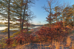 View of South Spectacle Pond in Early Morning Light, Quabbin Reservation, New Salem, MA