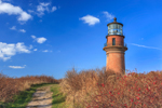 Gay Head Lighthouse with Path and Rosehips, Martha's Vineyard, Aquinnah, MA