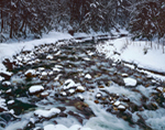 Cold River in Winter, Mohawk Trail State Forest, Berkshire Mountains, Charlemont, MA