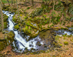 Waterfall and Small Stream, Berkshires Mountains, Shelburne, MA