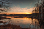 Sunset over Wetlands at Bow Brook, Quabbin Reservation, New Salem, MA