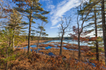 South Spectacle Pond, Quabbin Reservation, New Salem, MA