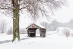 Covered Bridge on Fog Hollow Farm in Fog and Mist after Snowstorm, Suffield, CT