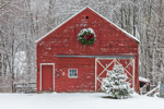 Old Red Barn with Holiday Wreath and Christmas Tree after Snowstorm, West Granby, Town of Granby, CT