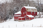Large Red Gambrel Barn after Fresh Snowfall, West Windsor,  VT