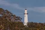 Late Evening View of St. Simons Island Lighthouse with Lamp Lit, St. Simons Island, GA