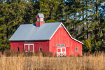 Early Morning Light on Red Barn with Cupola near Eagle Neck, South Newport, GA