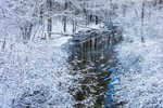 Snowy Woodlands along West Branch Tully River after Snowstorm, Orange, MA