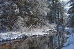 Snow-covered Woodlands along West Branch Tully River after Snowstorm, Warwick State Forest, Warwick, MA