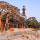 Early Morning Light at Sunrise on Sand Dunes and Hunting Island Lighthouse, Hunting Island State Park, Hunting Island, SC