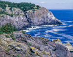 Little Whitehead and Blackhead Cliffs with Artists, Monhegan Island, ME