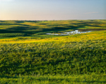 Prairie Pothole and Rolling Hills in Early Evening Light, Lostwood National Wildlife Refuge, Burke County, ND
