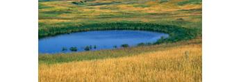 Prairie Pothole near Mud Lake area, Chase Lake National Wildlife Refuge, Stuttsman County, ND