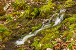 Small Stream Flowing over Moss-covered Rocks on High Valley Farm, Taconic Mountains, Copake Falls, NY