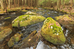 Rutland Brook in Early Spring, Massachusetts Audubon Wildlife Sanctuary, Petersham, MA